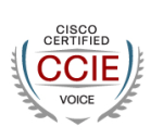 CCIE Voice Cisco Certified